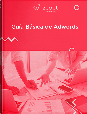 Guía Google AdWords Oficial